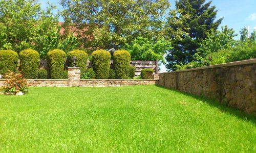 Jardin avec pelouse tondue et buissons taillés